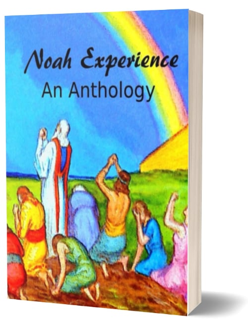 Children's Book – Noah Experience: An Anthology