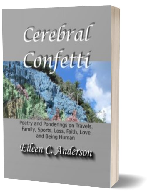 Poetry Book – Cerebral Confetti