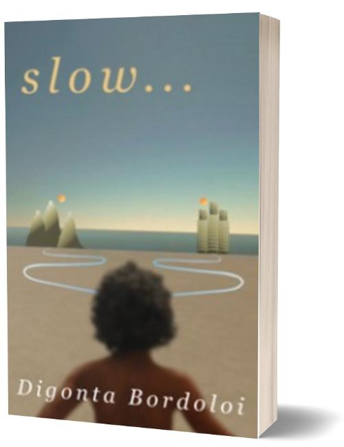 Fiction Ghostwriter – Slow